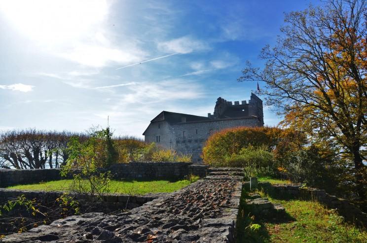 Eher schlicht wirkt die Burg wenn wir bedenken, dass einige aus der Dynastie der Habsburger zu Kaisern gekrönt wurden.