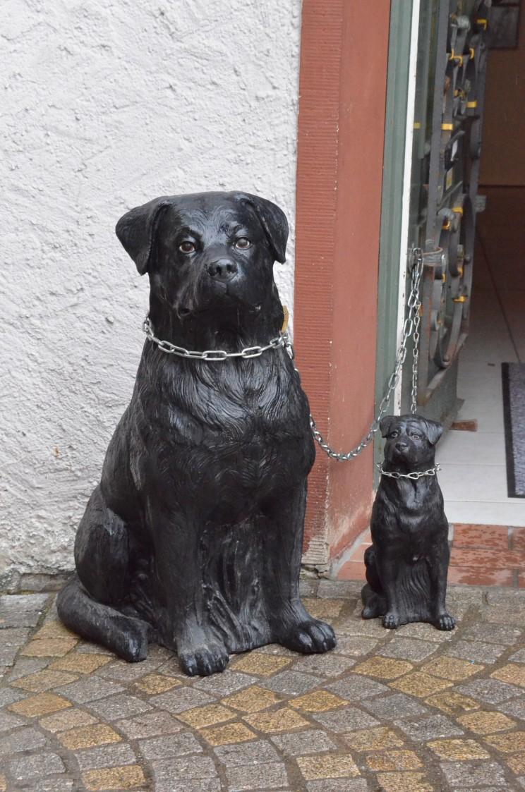 Allseits bekannt sind die Rottweiler-Hunde. Hatte wohl unsere Heldin die Baronin von Burgberg, auch so einen Hund für das Hüten der Kühe? Lest das Buch.